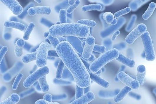 【免疫系統失調】4招教你增強免疫力,告別身體各種小毛病!